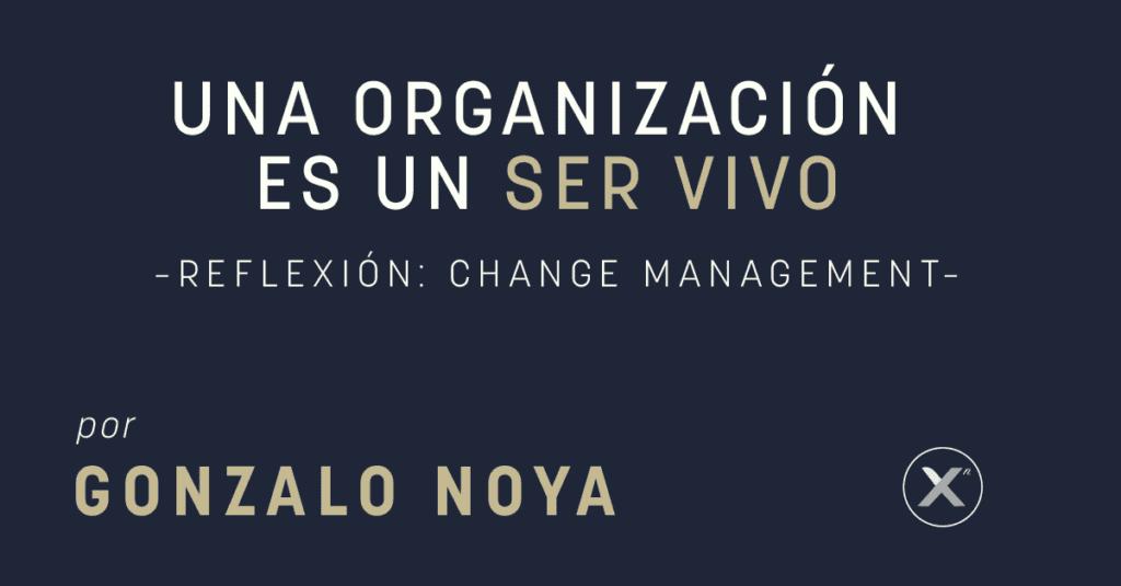una organizacion es un ser vivo-gonzalo-noya-xn